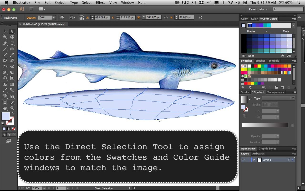Mako Shark Step  3