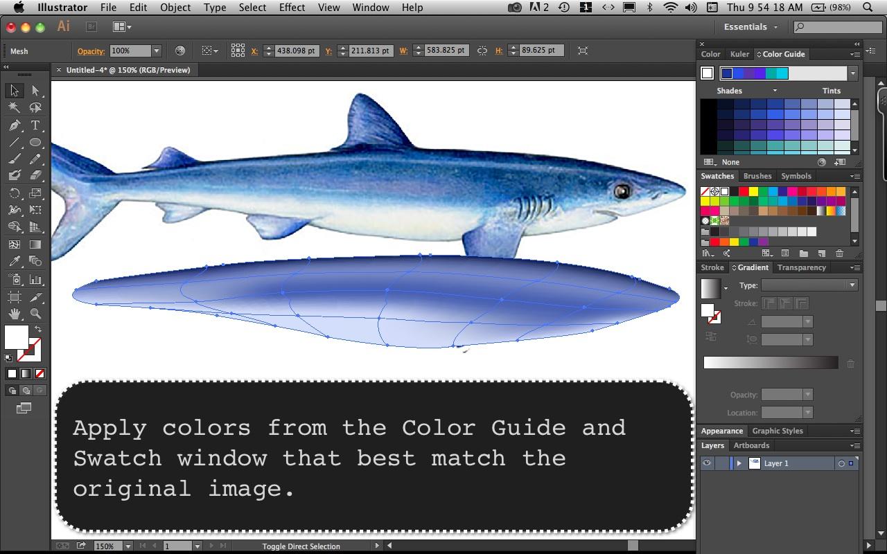 Mako Shark Step  4