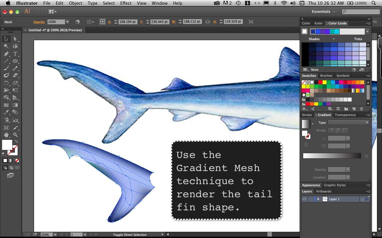Mako Shark Step  6
