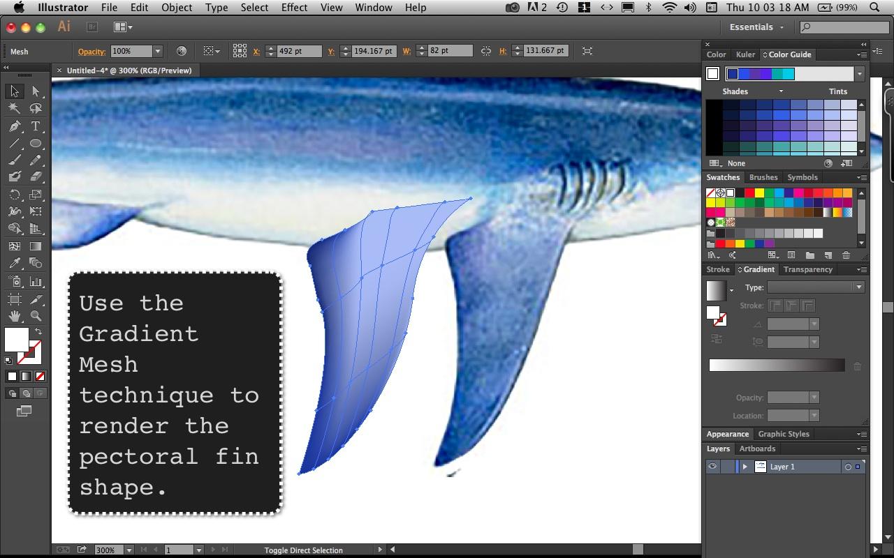 Mako Shark Step  7