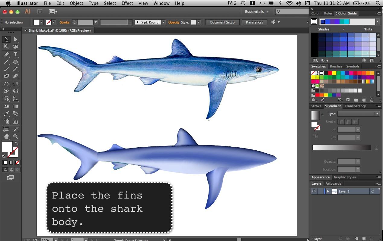 SharkMako9B