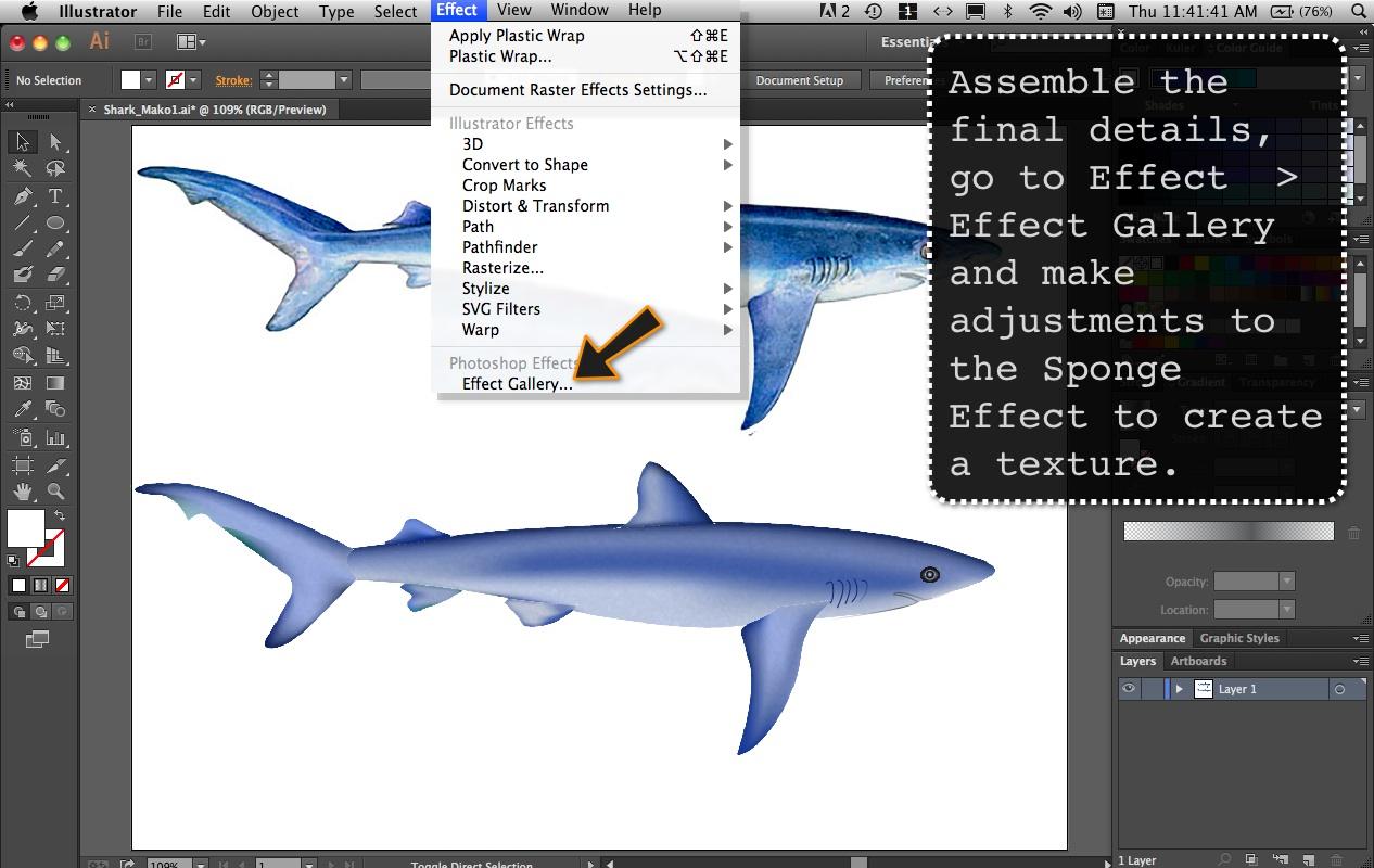 SharkMako9D