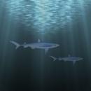 Under Water Tutorial