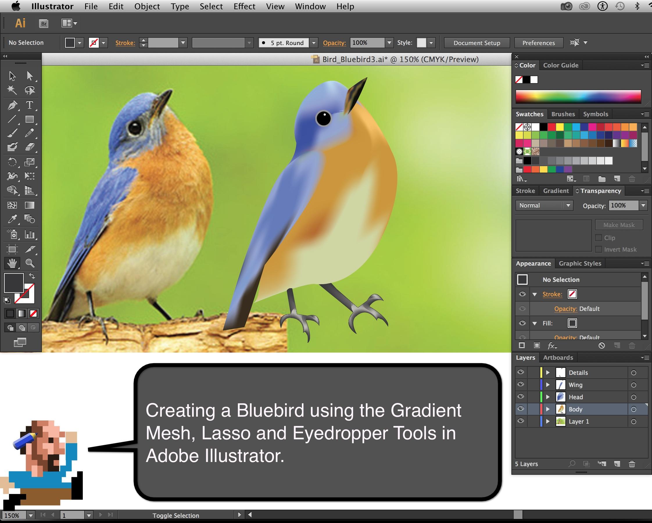 Bluebird_Aim