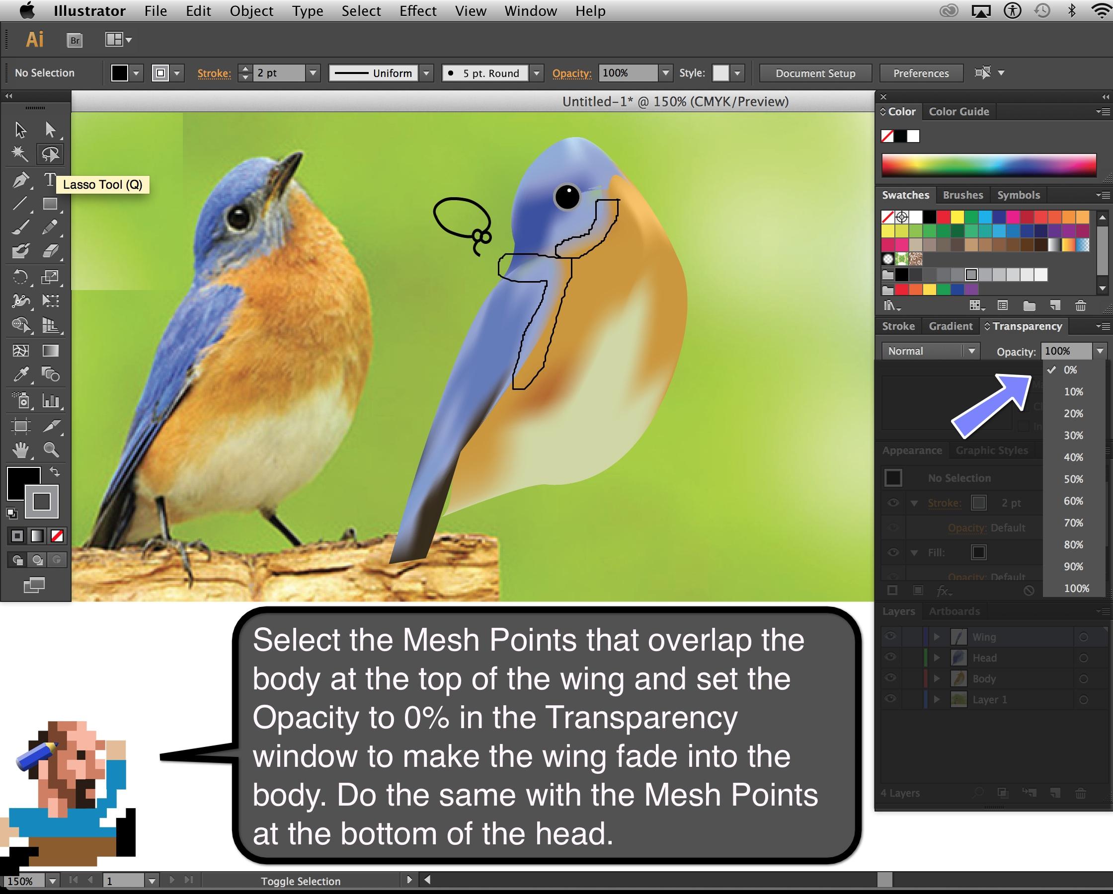 Bluebird_Step_10