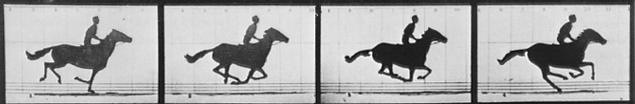 horse_sequence