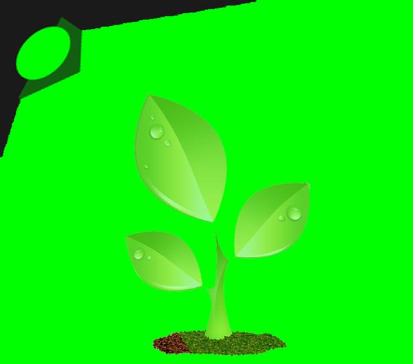 Light_Plant