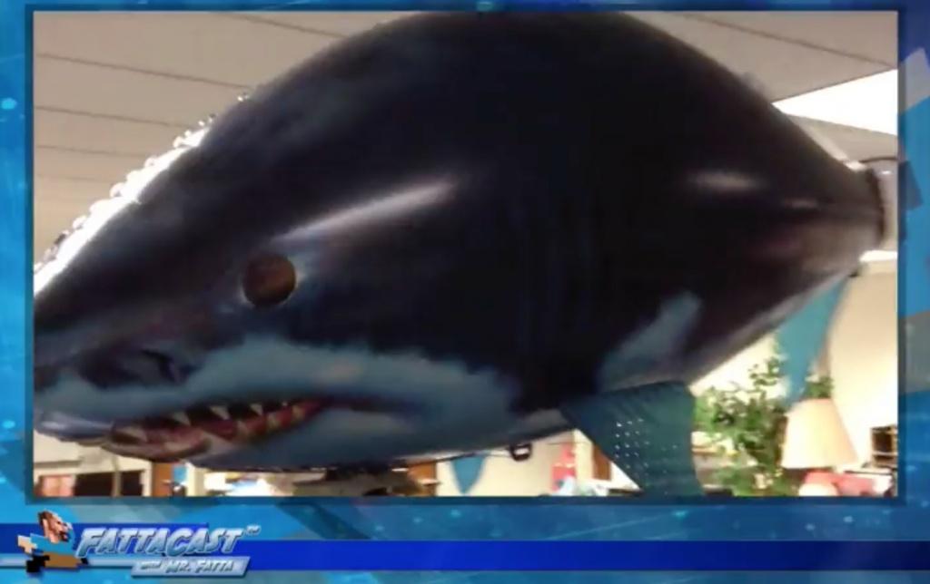 Shark_Video