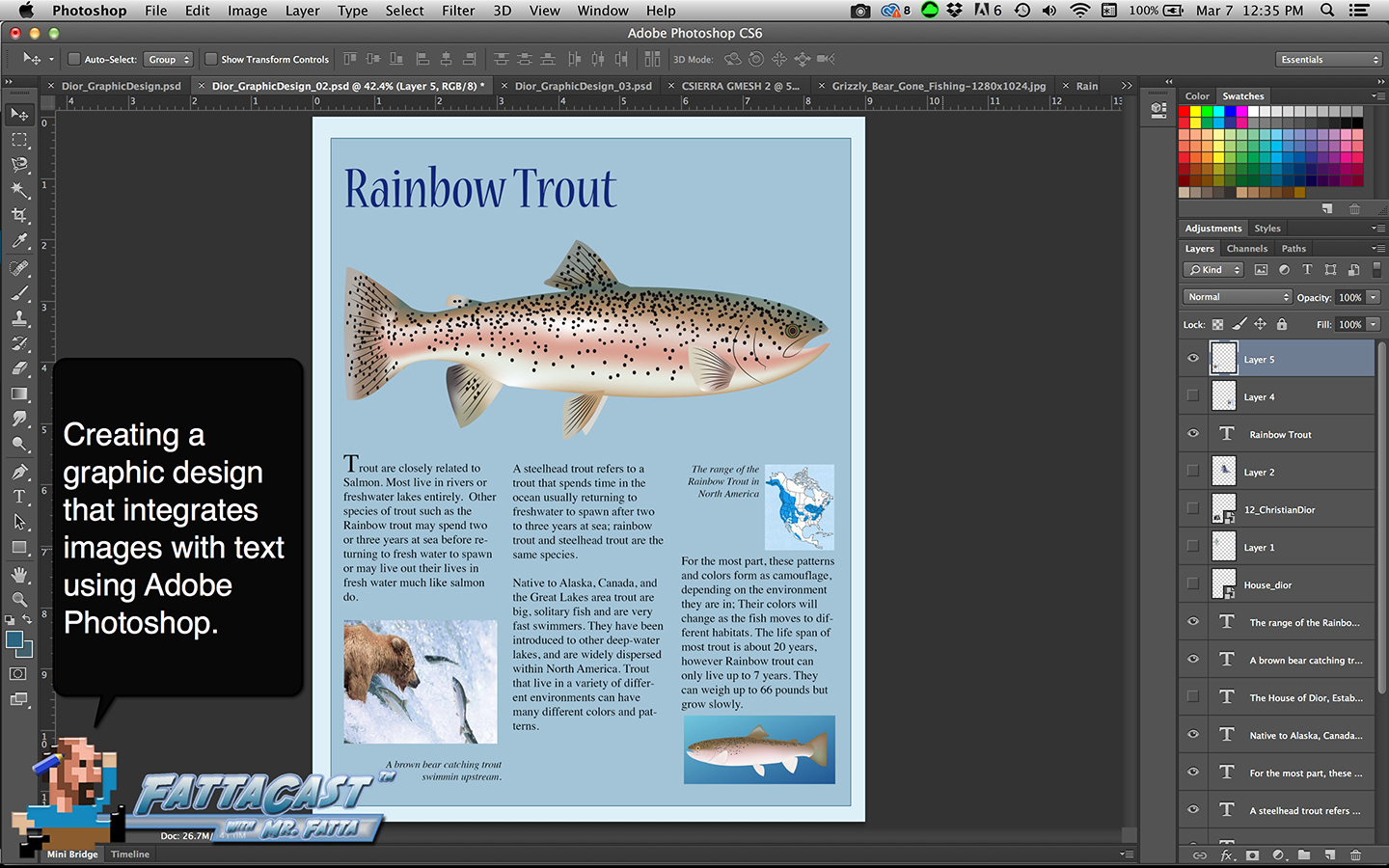 Trout Graphic Design Aim