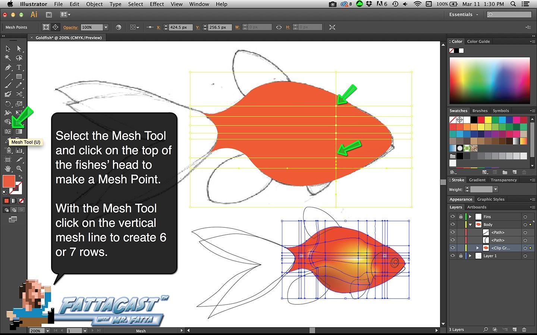 Goldfish 8