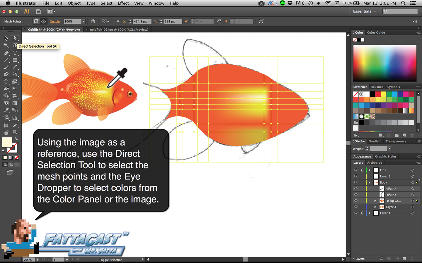 Goldfish Step 11