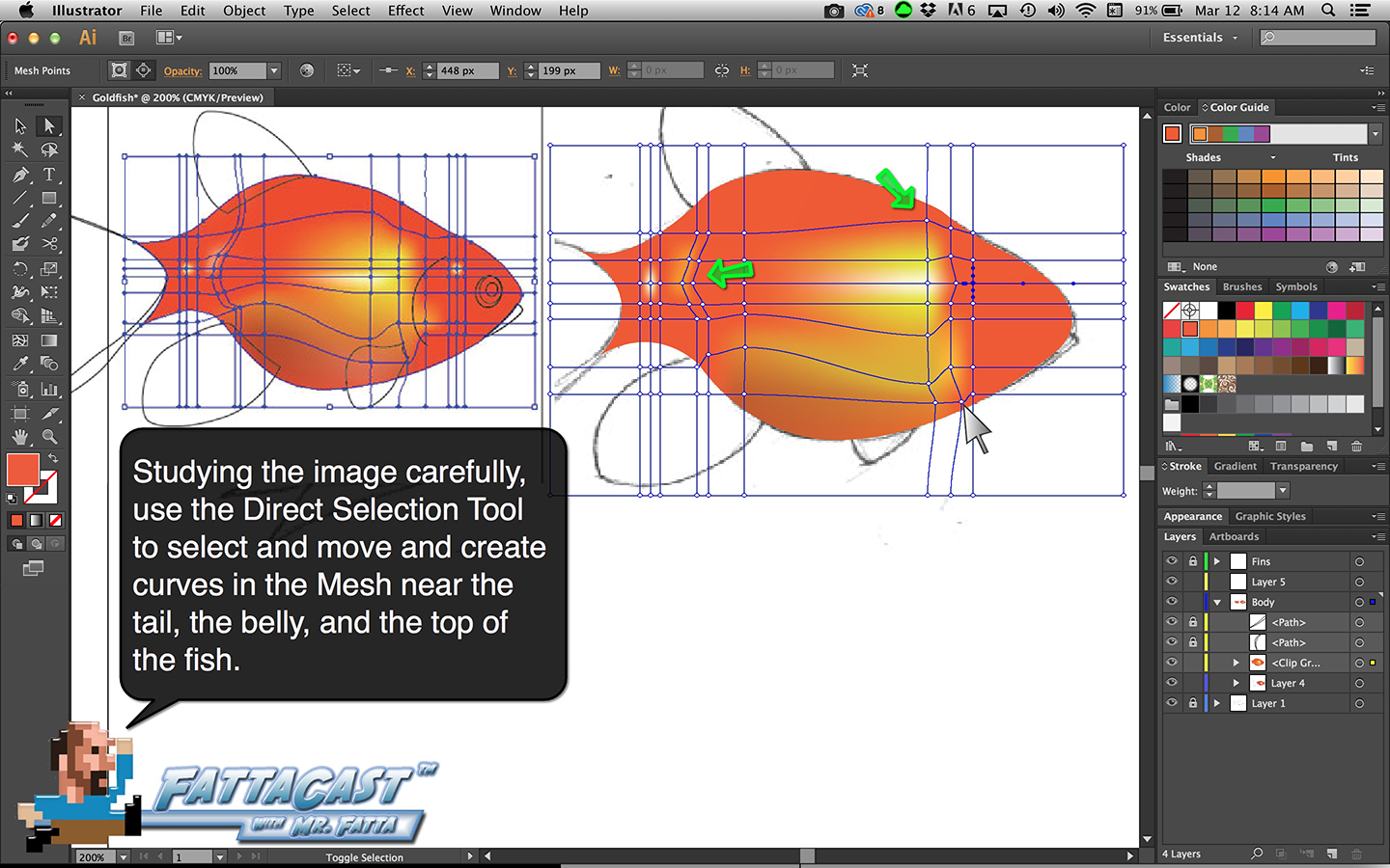Goldfish Step 12