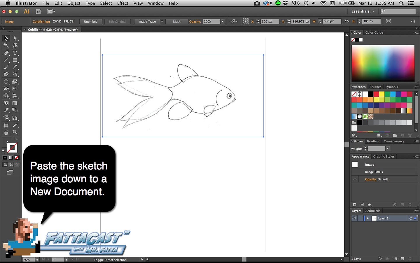 Goldfish Step 2