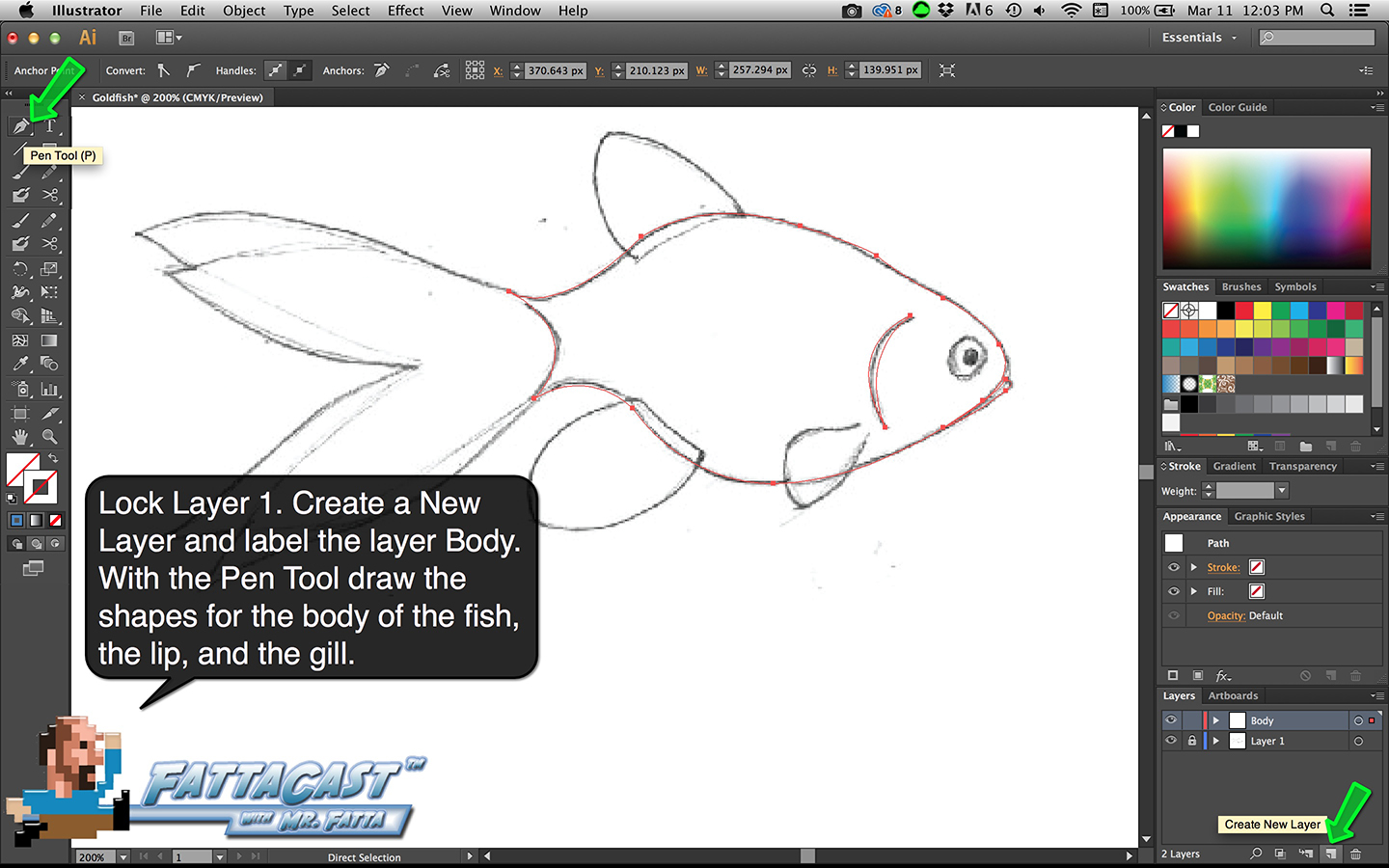 Goldfish Step 3