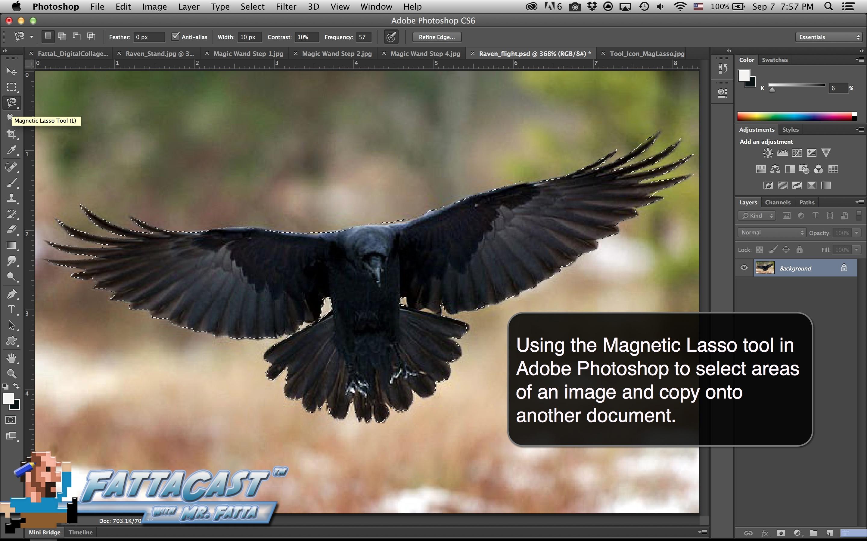 Magnetic Lasso Tool Aim