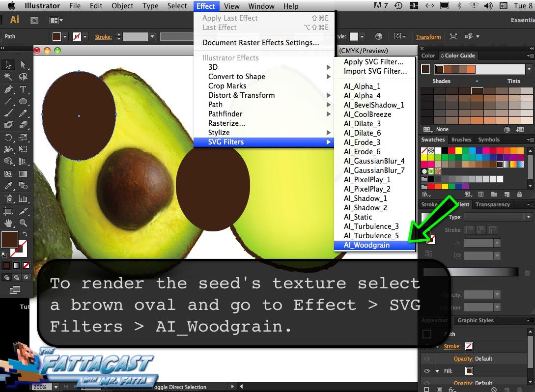 Avocado_10