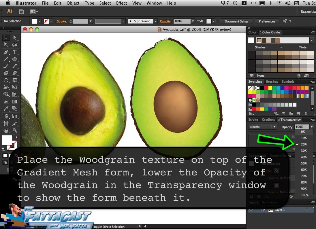 Avocado_11