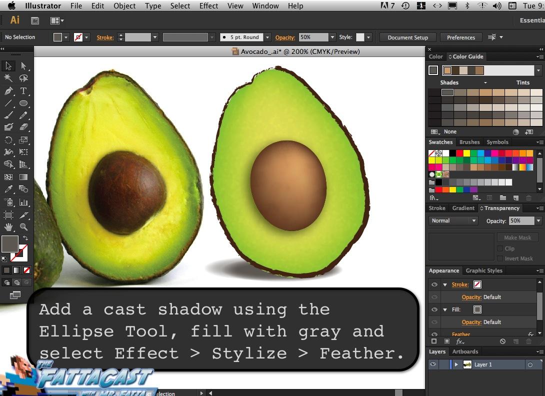 Avocado_13