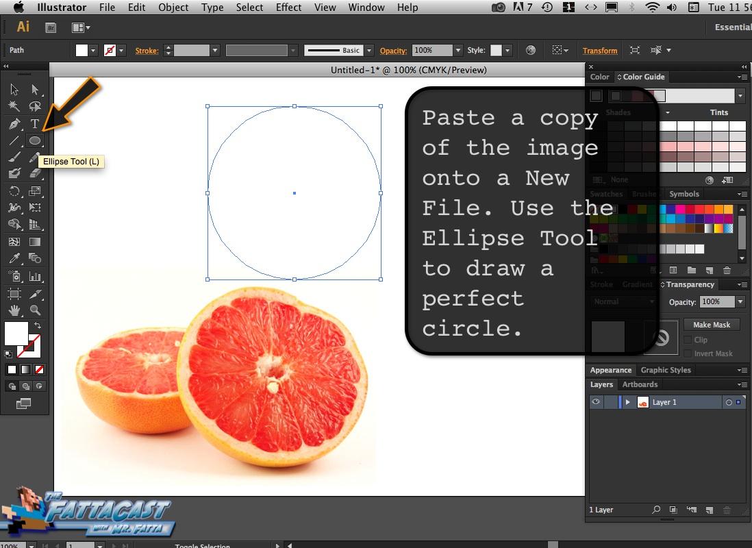 Grapefruit_02