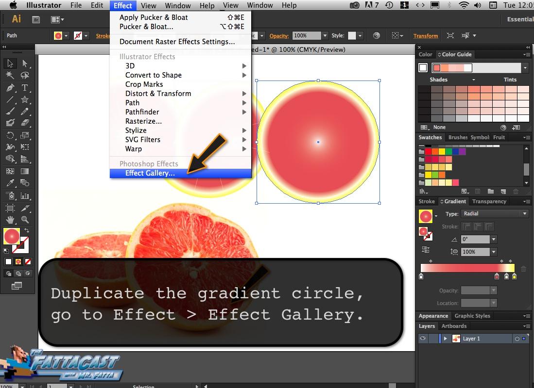 Grapefruit_06