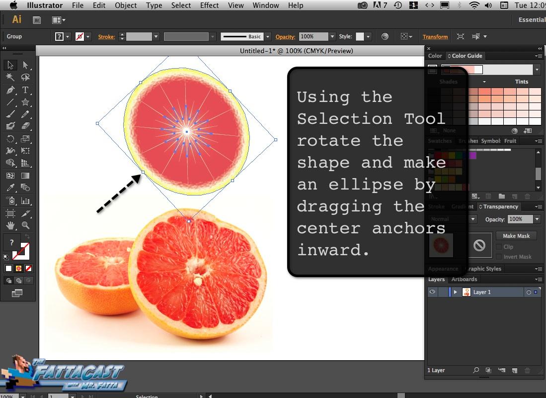 Grapefruit_09