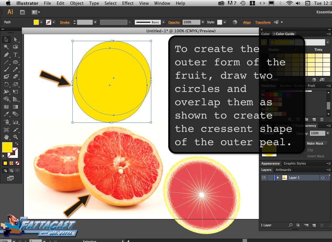 Grapefruit_10