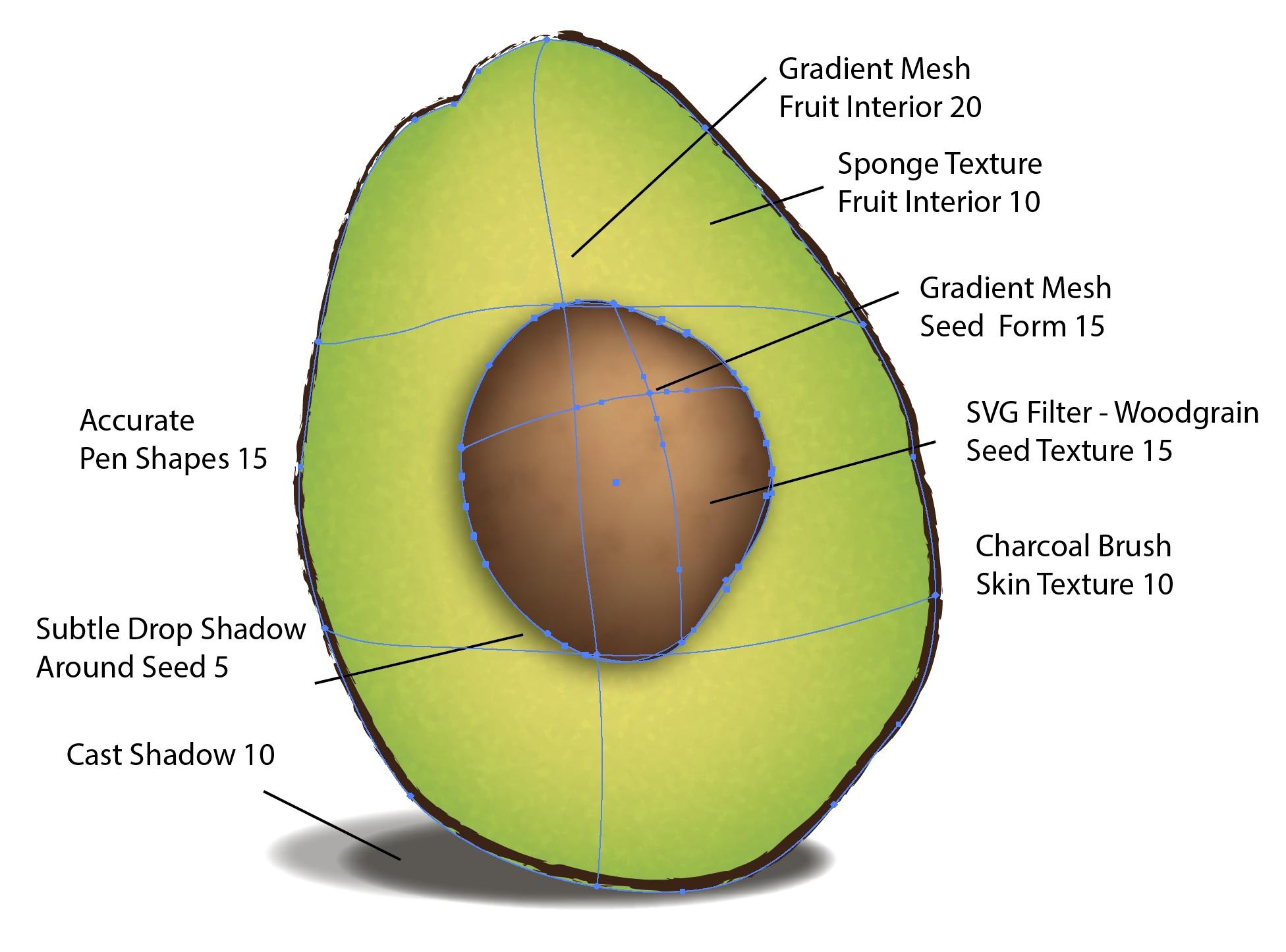 Rubric_Superfood_Avocado