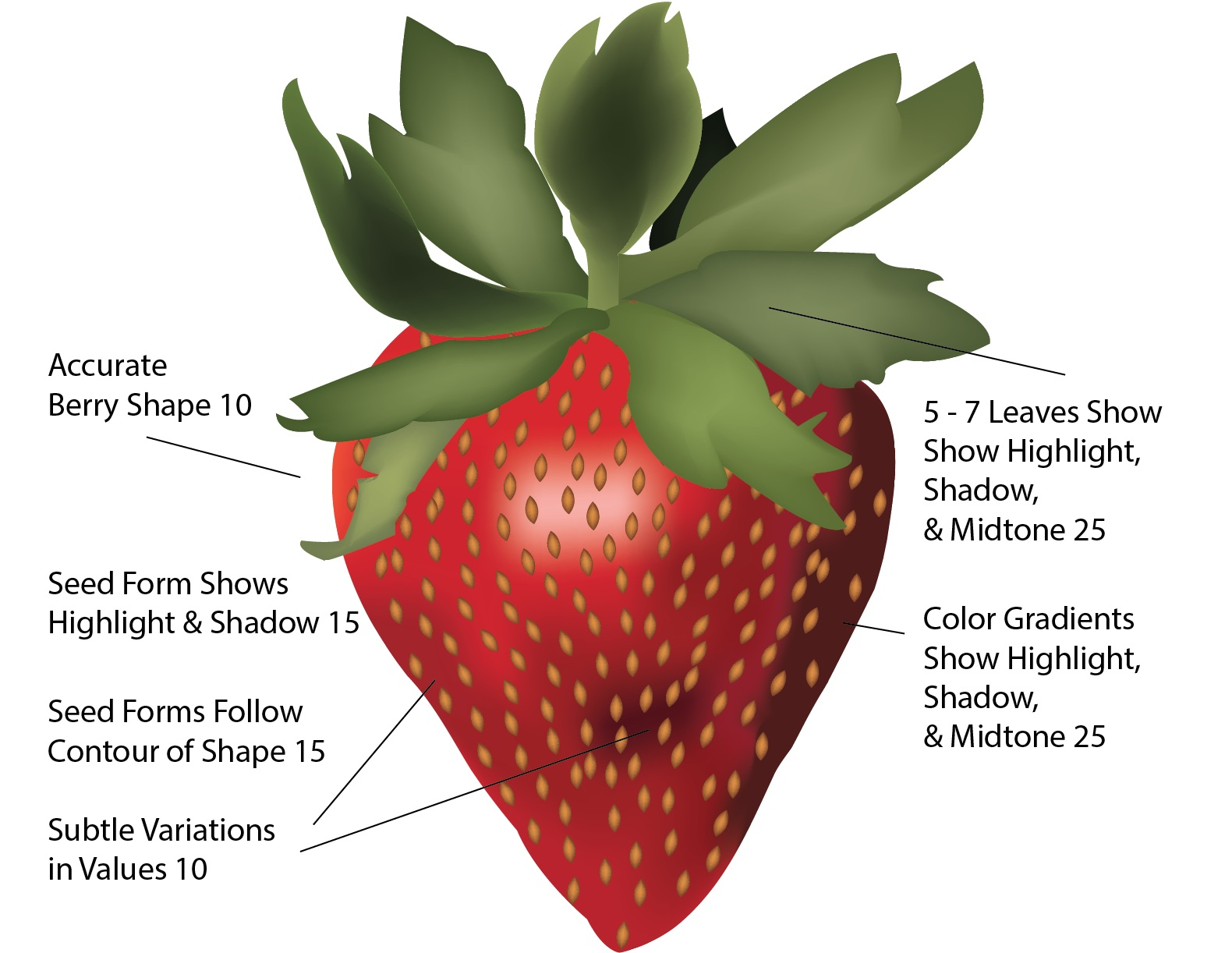 Rubric_Superfood_Strawberry