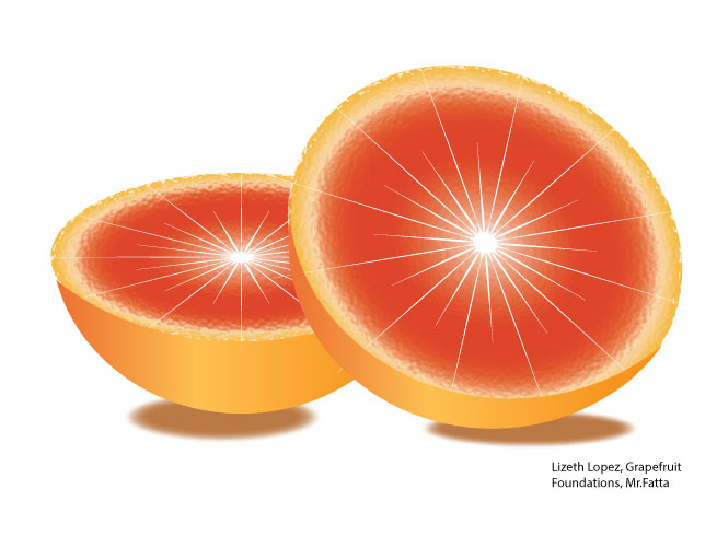 GrapeFruit Illustration by Lizeth L