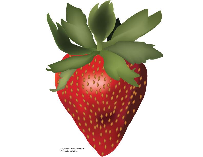 Strawberry Illustration by Raymond A.