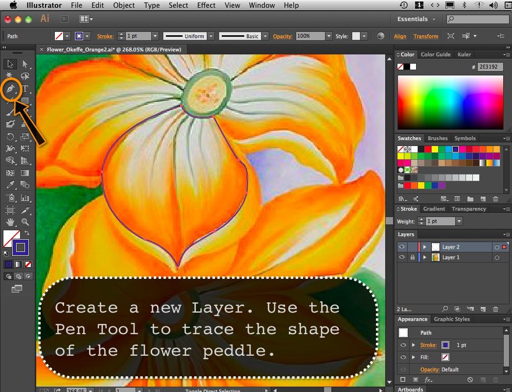 Flower_Orange_02