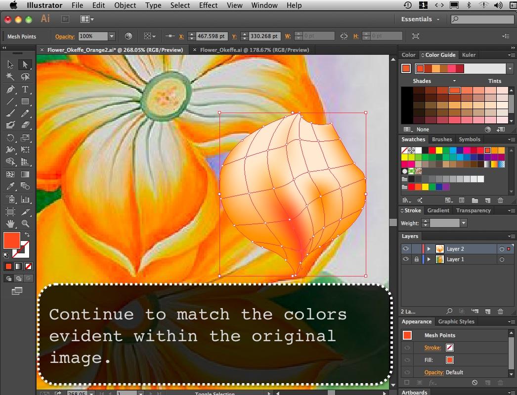 Flower_Orange_06