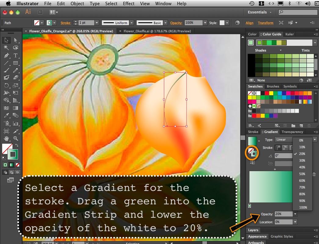 Flower_Orange_08