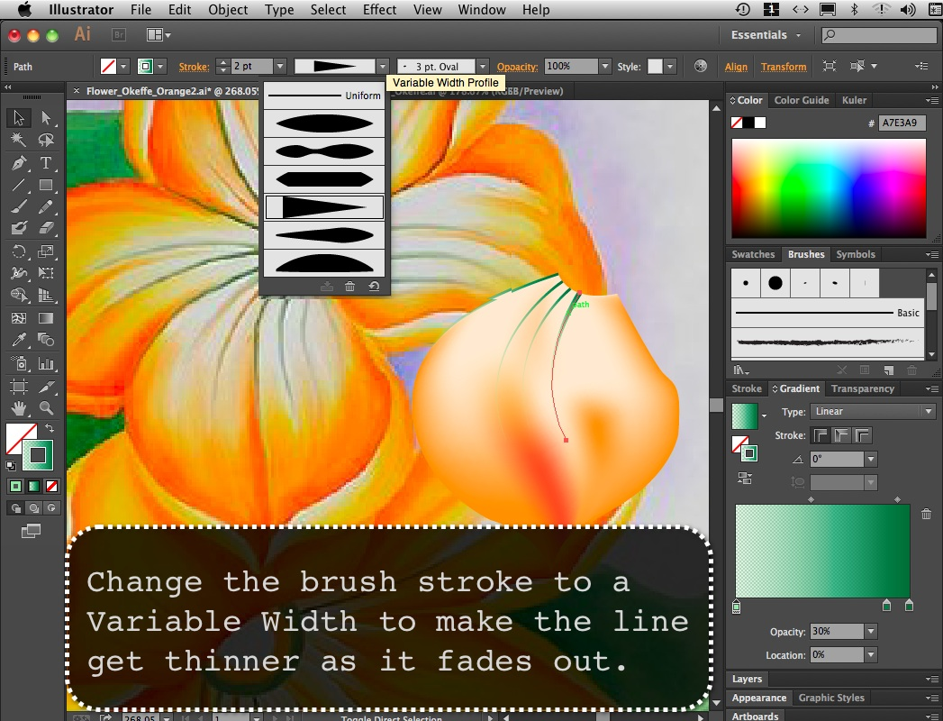Flower_Orange_09