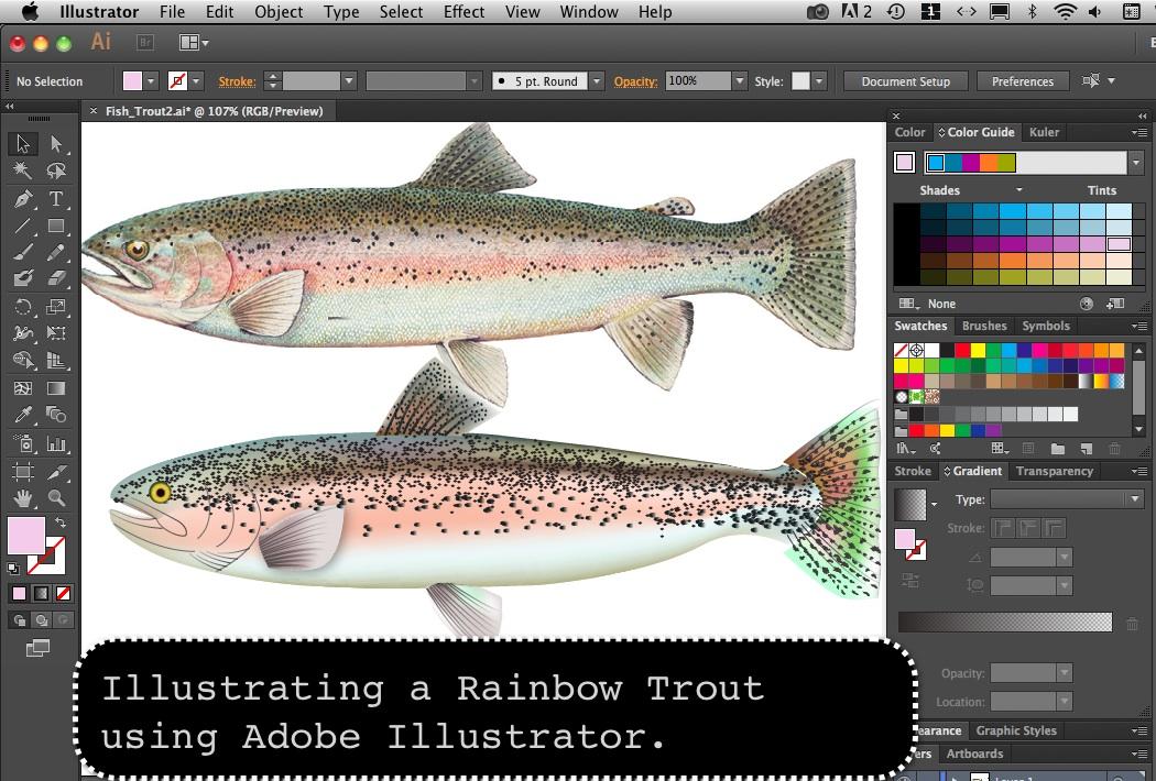 trout_01