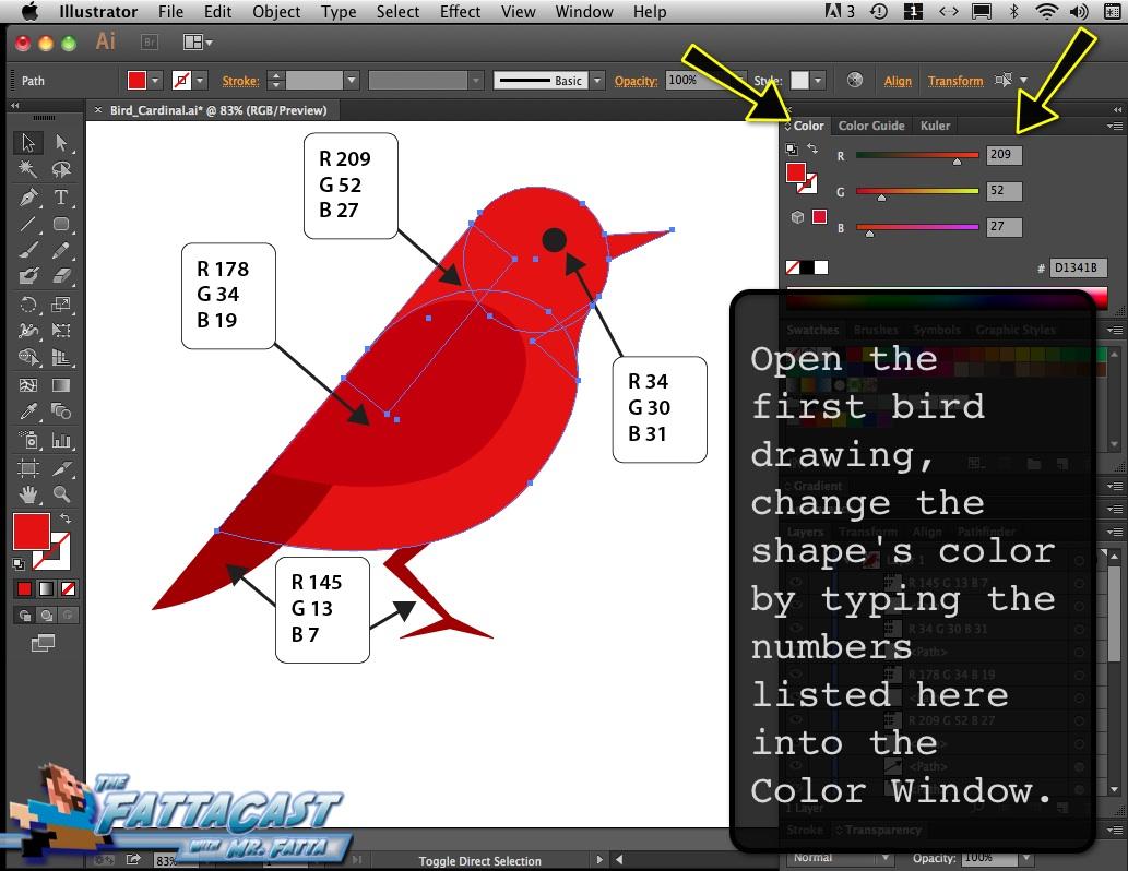 Bird_Cardinal_02