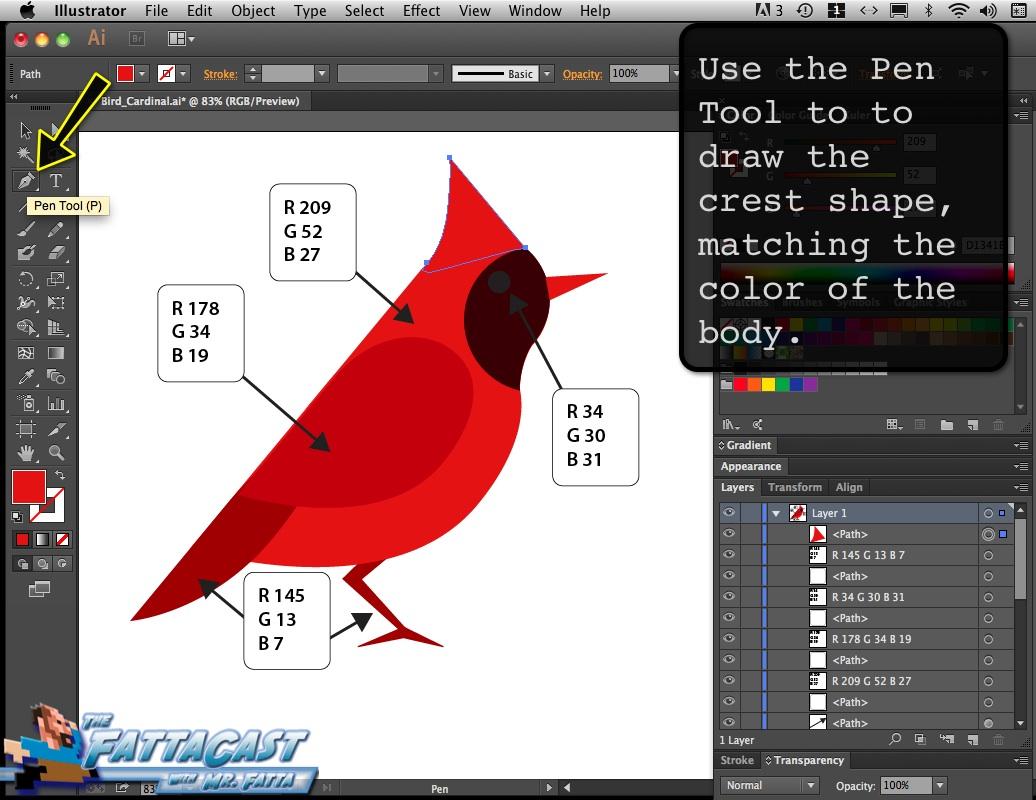 Bird_Cardinal_07