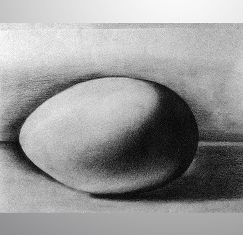 MuellerN_EggStudy