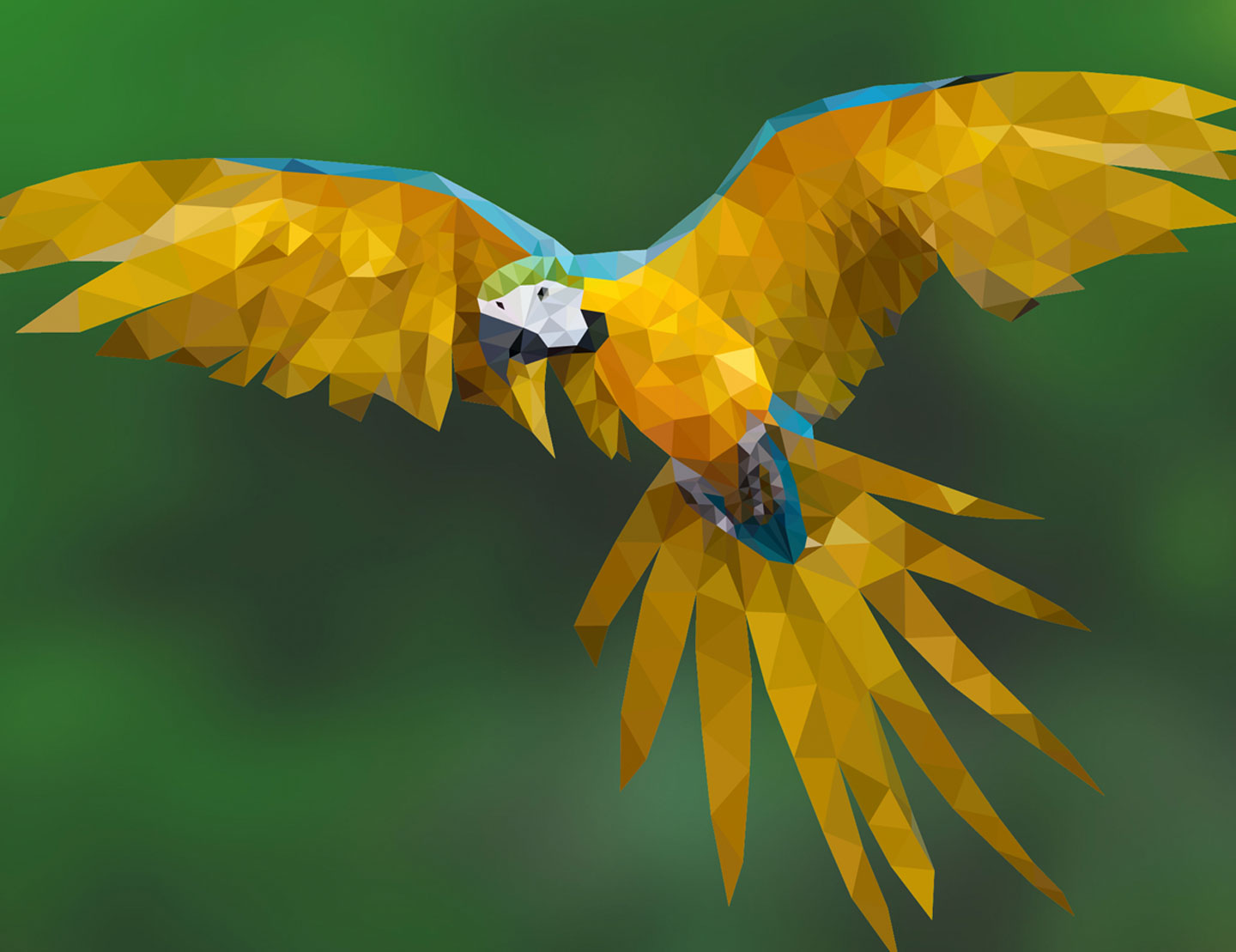 Low_Poly_Parrot_01 by Kevin Lems