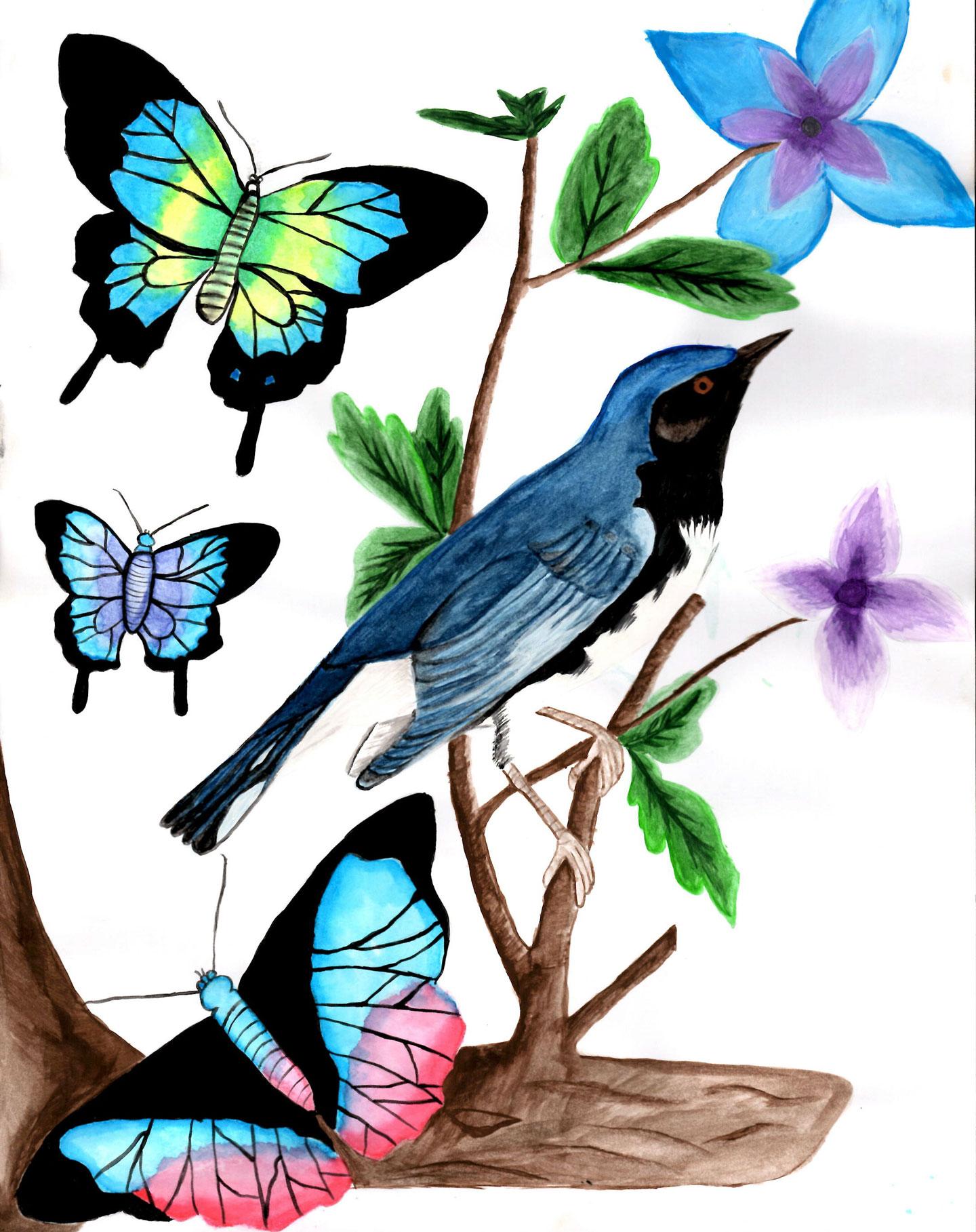Bird_LuzM_02