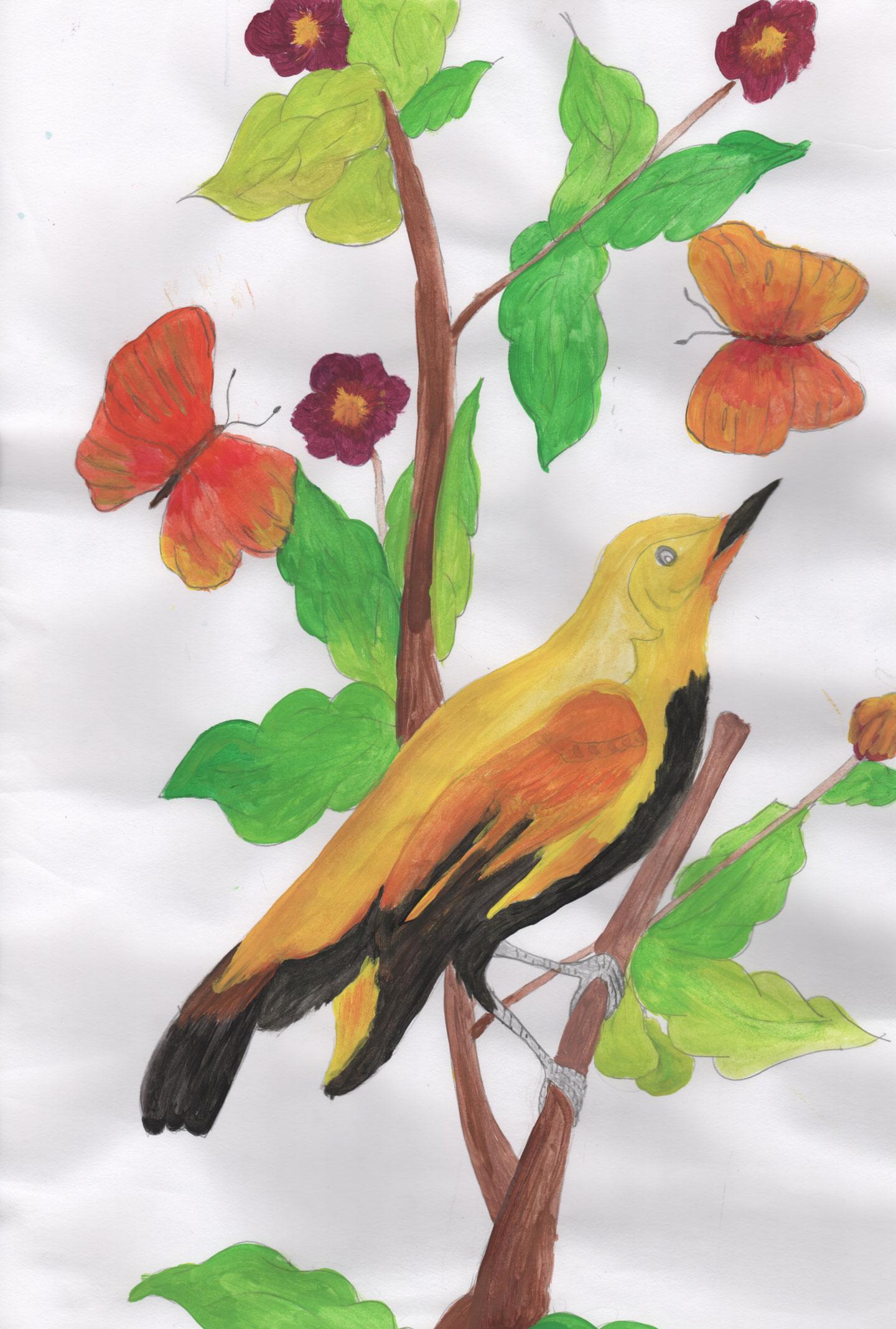 Bird_Marlin_01